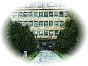 ui_building_oval